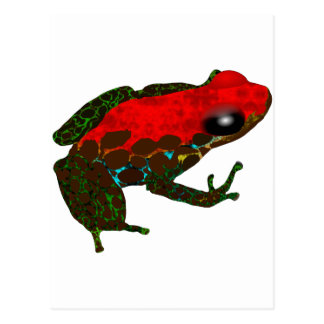 Rainforest Dart Frog Postcard