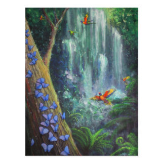 Rainforest Magic Postcard