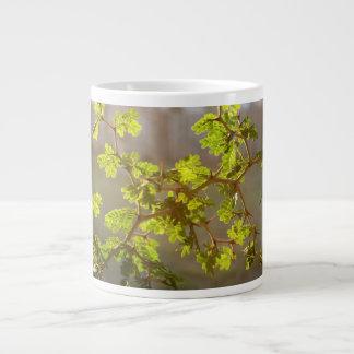 Raintree Branches Bonsai Photo Jumbo Mug