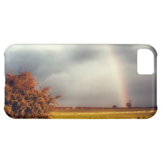 Rainy Day Rainbow iPhone 5C Case