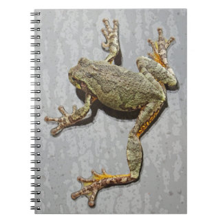 Rainy Day Tree Frog On Glass Spiral Note Books