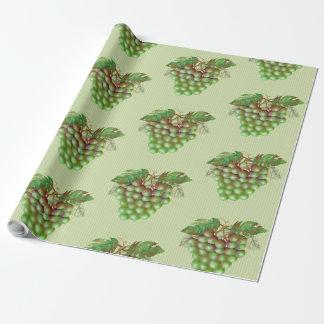 "RAISAIN GRAPES  30"" x 60'  CARTOON Wrapping Paper2"