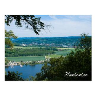 Raking local lake postcard