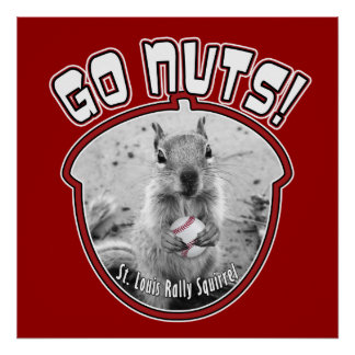 Rally Squirrel - Louis, Missouri Poster