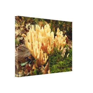 Ramaria stricta Fungi Canvas Print