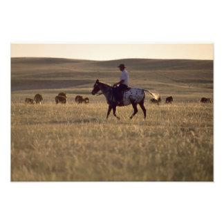 Rancher Buck Holmes riding a horse looking Photograph