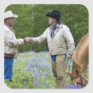Ranchers shaking hands across the fencing in square sticker