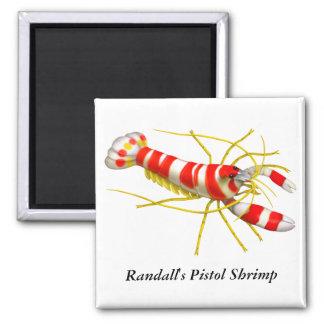 Randall's Pistol Shrimp Magnet