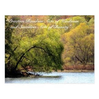 Random Acts of Kindness Postcard- Fall Beauty Postcard