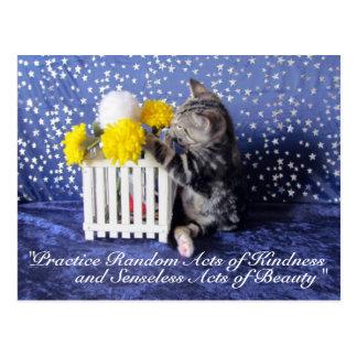 Random Acts of Kindness Postcard- Lilo 3809a Postcard