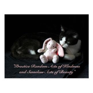 Random Acts of Kindness Postcard - Selene