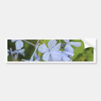 Random Garden Flowers #2 Bumper Stickers