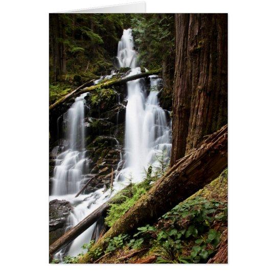 Ranger Falls Card