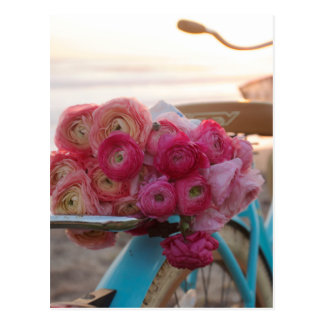Ranunculus at the beach postcard