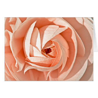 Ranunculus Swirl Greeting Card