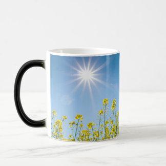 rape field morphing mug