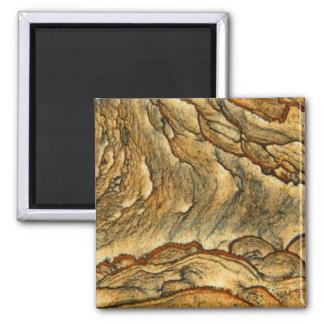 Rare landscape jasper closeup fridge magnet