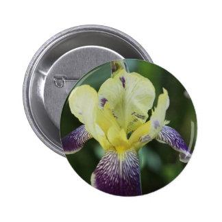 Rare Orchid Button