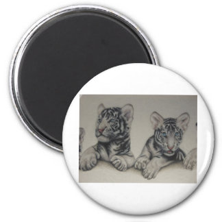 Rare Pair  White Tiger Cubs Magnets
