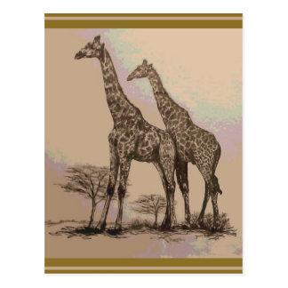 Rare Retro African Giraffes in Sepia & Pastels Postcard