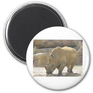 Rare Rhino 6 Cm Round Magnet