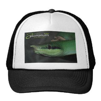 Rare snake mesh hat