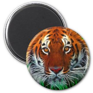 Rare Sumatran Tiger from Indonesia 6 Cm Round Magnet