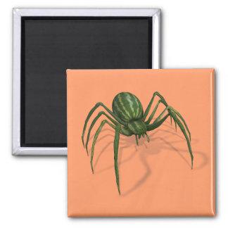 Rare Watermelon Spider Square Magnet
