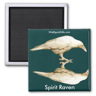 Rare White Raven ~ 2010 Square Magnet