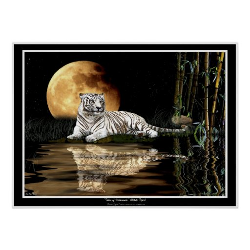 RARE WHITE TIGER & MOON Art Prints & Posters
