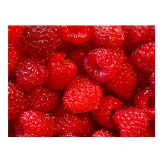 Raspberries Postcard