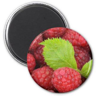 raspberries vol 1 magnet