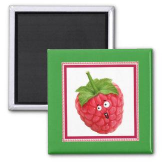 raspberry magnet