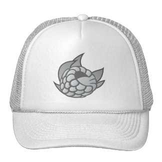 Raspberry Network Hat