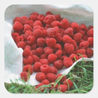 Raspberry Square Sticker