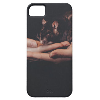 Rat in hand... iPhone 5 cases