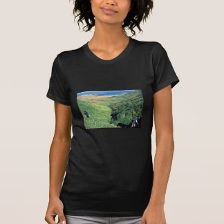 Rat Island, USbiologist Jeff Williams and Island C Tee Shirts