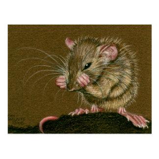 Rat Mad Paws Up Postcard