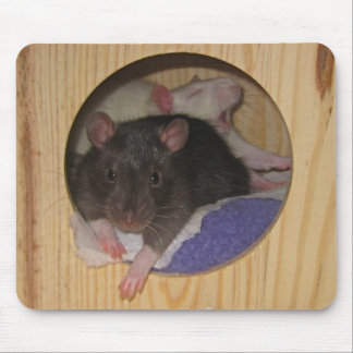 Rat Mousepad