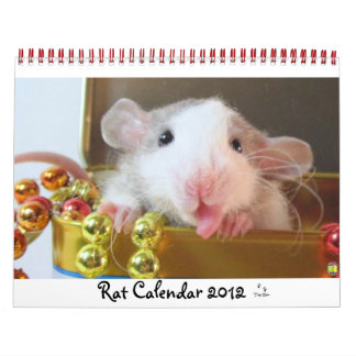 Rat Picture 2012 Wall Calendars