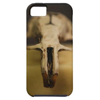 Rat Skull iPhone 5/5s/SE case