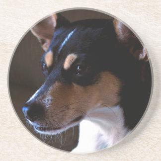 Rat Terrier Coaster