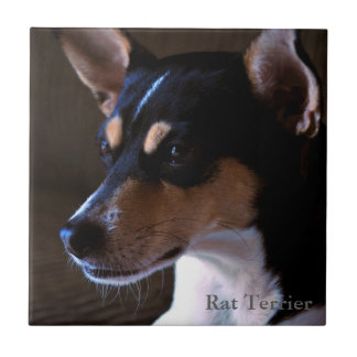 Rat Terrier Tile