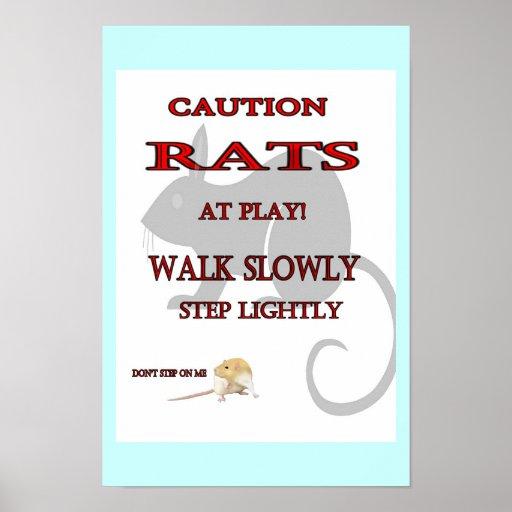Rats At Play Poster