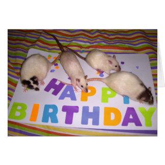 Rats Birthday Card! v2 Card