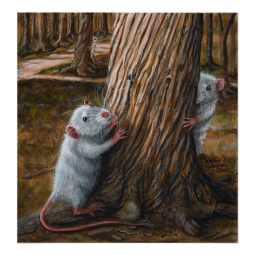 Rats playing by old tree poster