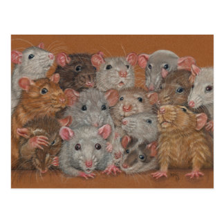 Rattie Reunion III postcard bunch gang rats