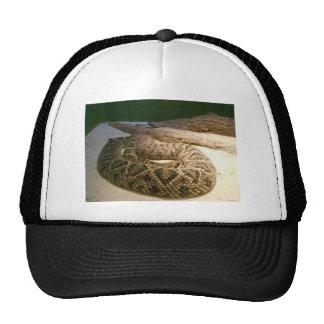 Rattle Snake Mesh Hat
