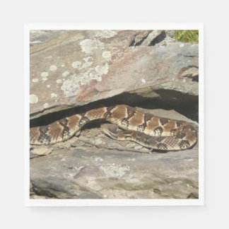 Rattlesnake at Shenandoah National Park Disposable Napkins