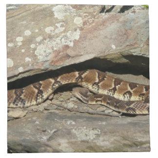 Rattlesnake at Shenandoah National Park Napkin